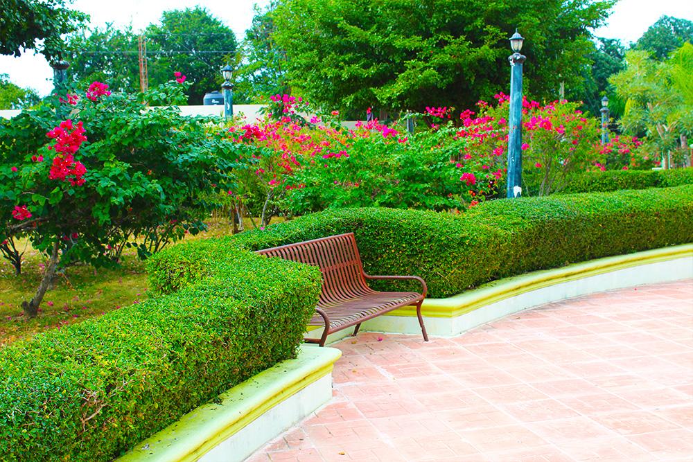 Bánica parque oficina senatorial iván lorenzo
